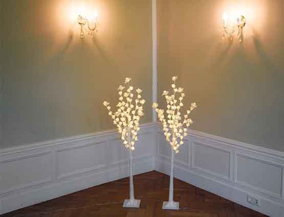 Rund um ihre Hochzeit Leuchtener Rosenbaum