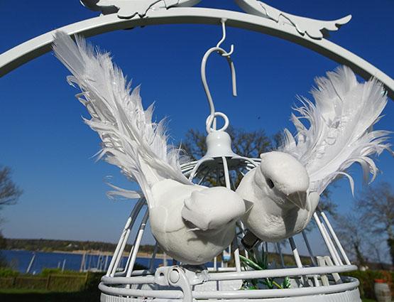 Tauben Hochzeit mieten, Hochzeitsdekoration mieten, Hochzeit mieten, Rund um Ihre Hochzeit berlin